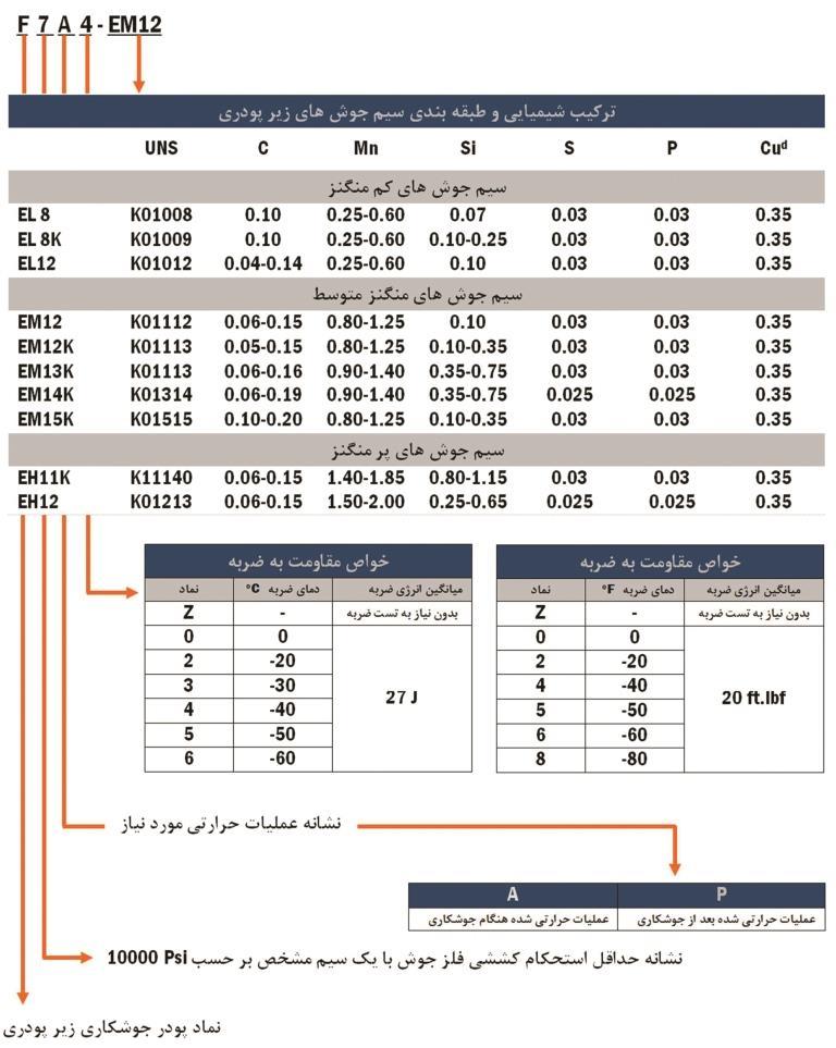 راهنمای-AWS.A5.17